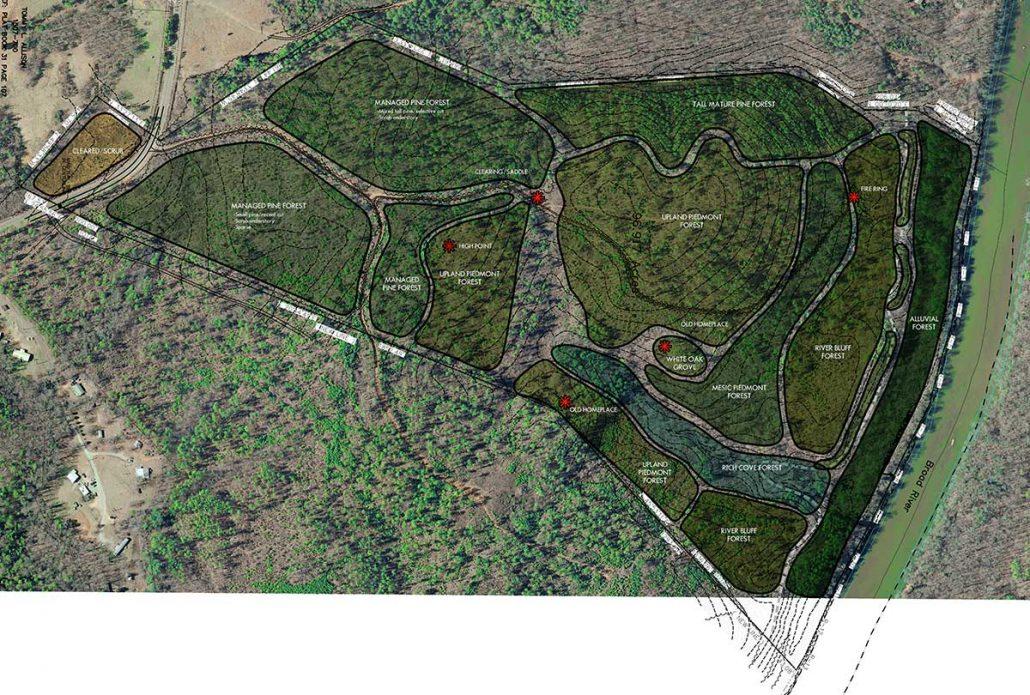 Crossroads Vegetation Analysis Plan